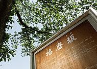 播磨坂さくら並木 約360m(徒歩5分)