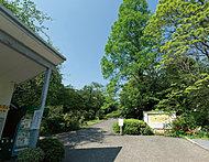 小石川植物園 約1,060m(徒歩14分)