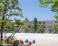 市立草加小学校 約70m