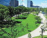 中野セントラルパーク(提供写真※1) 約420m(徒歩6分)