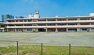大宮南小学校 約1,690m