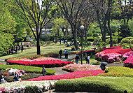 福岡市動植物園 約890m(徒歩12分)