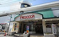 ピーコックストア 井荻店 約1,060m(徒歩14分)