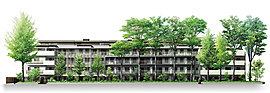 並木の美しさを引き立てながら、街並みに優美に佇む邸を目指しました。5階建ての最上階部分を後退させることで4層に見せ、ケヤキ並木が映えるように配慮。