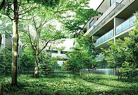 春夏秋冬の移ろいとともに暮らす、歓びにあふれた日々へ。「ザ・パークハウス 浜田山季の杜」は、豊かな庭木を抱く御屋敷の跡地に誕生。この地で愛でられてきた樹々を主役とし、多くの既存樹を残した中庭を配置。