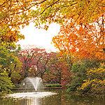 和田堀公園 約1,820m(徒歩23分)(平成24年11月撮影)