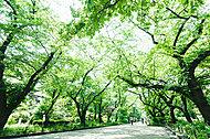上野恩賜公園 約840m(徒歩11分)