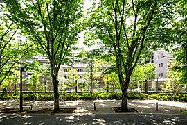 千歳通りの壮麗なケヤキ群と連なる常緑樹。そこに、この街が求めていた四季の彩りを添えて。邸宅が創りだす風景に求めたもの。それは、日々の暮らしにさらなる潤いをもたらす街並みを描くこと、記憶に残る街の風景を創り出すことでした。