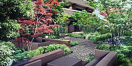 自然の薫り、樹々のゆらぎ、風のそよぎ。澄みわたる空の下で、穏やかに心地よく。ソファやテーブルを設えたプライベートガーデンで、目黒川の景色を重ね合わせる。四季に彩られたこの空間は、流れる時間をゆっくりと感じさせる。