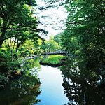 有栖川宮記念公園 約510m(徒歩7分)