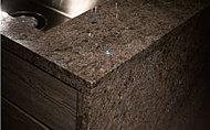 キッチンは側面までカウンター素材と同材とし、洗練された質感と独特の風合いがキッチンを優雅に彩ります。