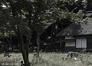 平尾山荘跡 約540m(徒歩7分)