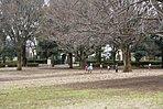 祖師谷公園(徒歩11分、約810m)