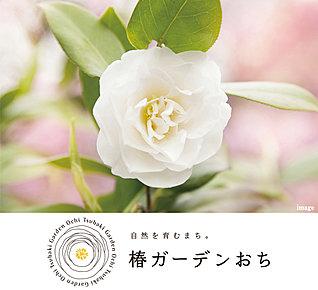 椿ガーデンおち(建築条件付宅地分譲) ※Image