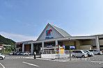 ※万代北須磨店(約540m:徒歩7分) 平成28年8月撮影