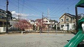 春にはきれいな桜が咲き誇る旭町5丁目公園
