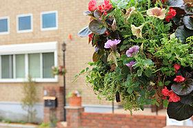 街区全体に豊かな潤いを演出する植栽を計画。