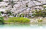 妙正寺公園まで240m