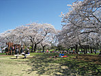 篠崎公園…徒歩1分(30m)園内には野球場やテニスコートのほかに、バーベキュー場などもあり一日楽しめる公園です。