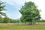 【木場公園】…1,200m 軽いスポーツもできるふれあい広場や木製遊具のある冒険広場、都市緑化植物園に加え、ドッグランやバーベキュー広場もあります。