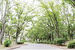 【篠崎公園(A地区)】…1,590m 豊かな開放感と自然で、地域の憩いの場となる篠崎公園。園内には野球場やテニスコートなどのスポーツ施設、様々な遊具、ドッグラン、広場などが整備されている他、バーベキューを楽しむこともでき、アクティブな楽しみもゆったりとした癒しも満喫できます。