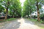 徒歩5分:平塚市総合公園