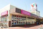 コモディイイダ(400m徒歩5分)東京・埼玉・千葉・茨城の一都三県に81店舗を展開する食品スーパーマーケット。