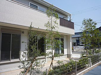外観 (No.1)