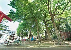 本太児童公園(440m)