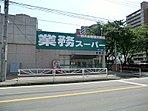 業務スーパー藤原店:徒歩10分(760m)