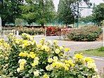 伊奈町制記念公園 約2.2km(車約5分) バラのまちとして有名な伊奈。休日はご家族全員でのお出かけをお楽しみください。