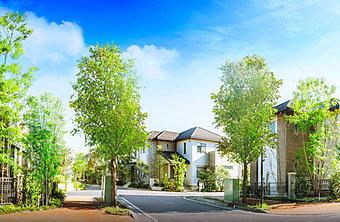 新街区「プレミアムレーベル」誕生。電線地中化の全256邸の大規模戸建分譲。車の進入路を2箇所に絞り、安全性も高めています。