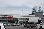 セイブ袴塚店まで1000m (徒歩13分・車6分)駐車場147台完備。100円ショップが隣接しているため、食料品・日用品をまとめて購入できます。9:30~22:00までの営業です。