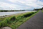 江戸川の気持ちの良い風が感じられます。