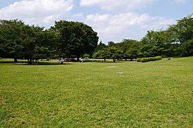 都立光が丘公園(徒歩5分・約365m)