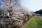 四季折々の季節を感じるロケーション。春には天田川沿いの桜並木もお楽しみいただけます。