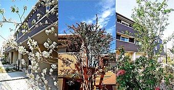 【多世代が集う】10棟40邸さまざまなタイプの暮らしが広がる街。エリア毎に四季の花々が咲きさまざまな表情を醸し出し、住まうひとをやさしく包み込みます。夜間は街全体でライトアップ、防犯にも努めています。