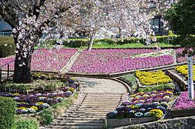 かにが沢公園/徒歩15分(約1.140m)