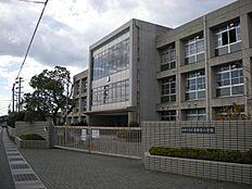 東神吉小学校…約770m