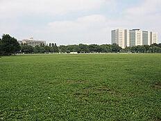 緑豊かな公園。徒歩1分