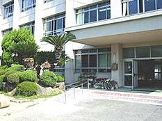 小学校木本小学校まで313m