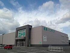 ニトリ和歌山店