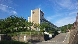 中央小学校