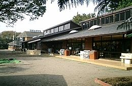 幼稚園八幡幼稚園まで1232m