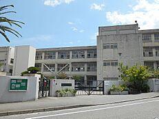 西宮市立北夙川小学校(556m)