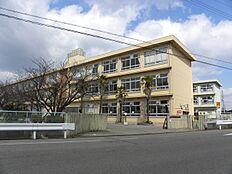 平岡南小学校…約970m