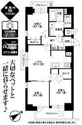 世田谷区駒沢2丁目