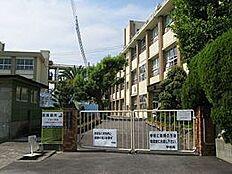 小学校川永小学校まで579m