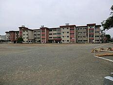 清水小学校 約1000m