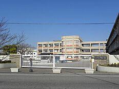 平岡小学校…約930m
